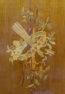 konstrukcja mahoniowa, intarsje z różnych gatunków drewna, mosiądz, blat marmur, kon. XIX w.